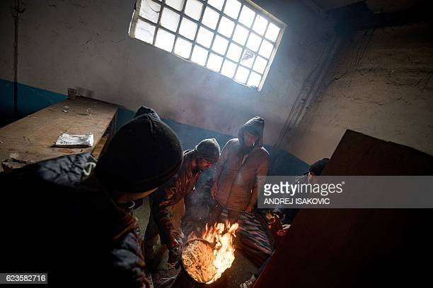 Migrants fry potatoes in a makeshift shelter in an abandoned warehouse in Belgrade on November 16, 2016. Hundreds of thousands of migrants had passed...