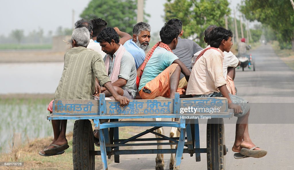Migrants labourers arriving in Punjab for Paddy Crop Plantation on Rajpura road on June 14 2016 in Patiala India Though the Punjab government has set.
