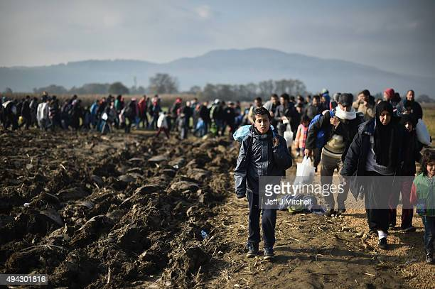 Migrants walk past farm fields as they are escorted by police towards buses which will take them to Brezice refugee camp on October 26 2015 in...