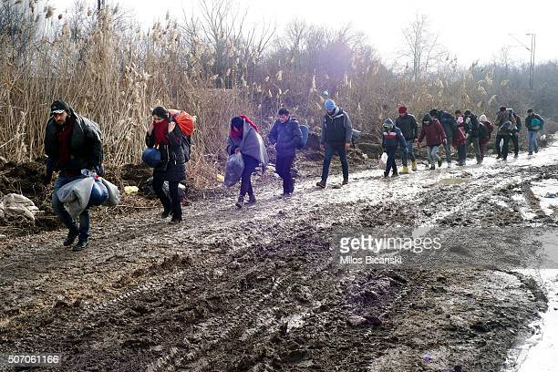 Migrants walk through thick mud as they cross the Macedonia / Serbia border in the southern Serbian village of Miratovac on January 27 2016 in...