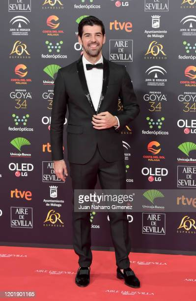 Miguel Angel Muñoz attends the Goya Cinema Awards 2020 during the 34th edition of the Goya Cinema Awards at Jose Maria Martin Carpena Sports palace...