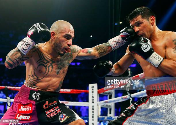 Miguel Cotto of Puerto Rico lands a left punch to the face of Sergio Martinez of Argentina during the third round of the WBC Middleweight...