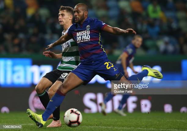 Miguel Luis of Sporting CP with Marcao of GD Chaves in action during the Liga NOS match between Sporting CP and GD Chaves at Estadio Jose Alvalade on...