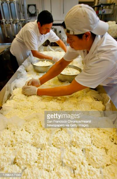 Miguel Martinez and Martin Benito work with the cheese curds to make the Red Hawk triple cream at the Cowgirl Creamery, Thursday Feb.5 Point Reyes...