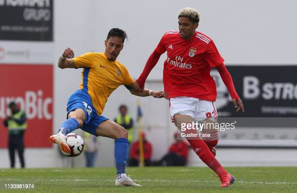 Miguel Rodrigues of GD Estoril Praia with Pedro Henrique of SL Benfica B in action during the Ledman Liga Pro match between GD Estoril Praia and SL...