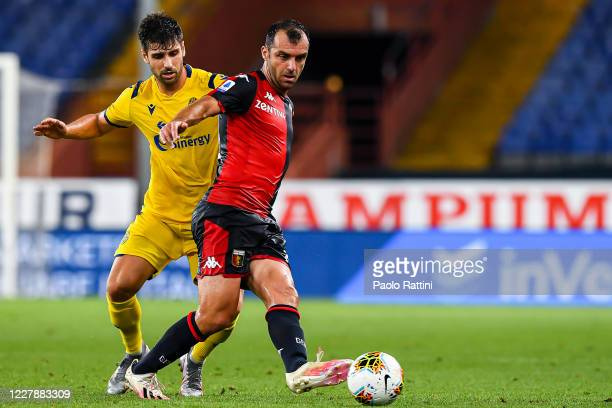 Miguel Veloso of Hellas Verona and Goran Pandev of Genoa vie for the ball during the Serie A match between Genoa CFC and Hellas Verona at Stadio...