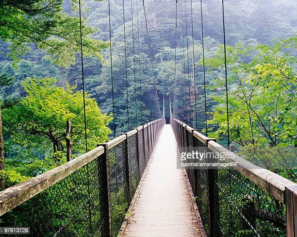 mikaeri suspension bridge, nasushiobara, tochigi prefecture, japan - つり橋 ストックフォトと画像