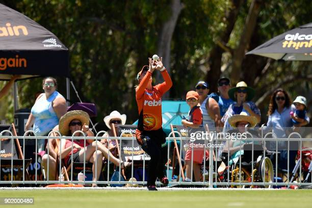 Mikayla Hinkley of the Scorchers takes a catch to dismiss Harmanpreet Kaur of the Thunder during the Women's Big Bash League match between the Sydney...