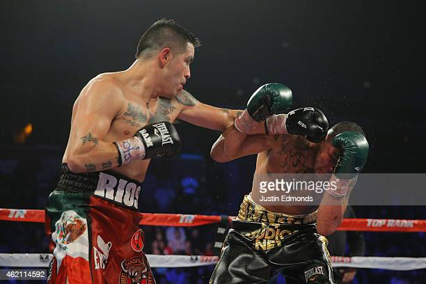 Mike Alvarado fights Brandon Rios during a WBO International Welterweight Title fight at First Bank Center on January 24, 2015 in Broomfield,...