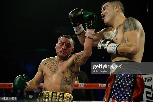 Mike Alvarado lands a punch on Brandon Rios during the WBO International Welterweight Title January 24, 2015 at 1st Bank Arena.
