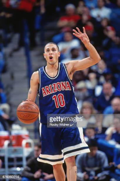 Mike Bibby of the Arizona Wildcats dribbles during a game played circa 1998 at Arco Arena in Sacramento California NOTE TO USER User expressly...