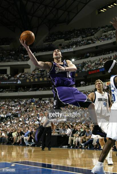 Mike Bibby of the Sacramento Kings against the Dallas Mavericks on April 1 2004 at the American Airlines Center in Dallas Texas NOTE TO USER User...