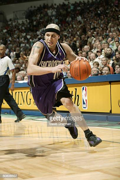 Mike Bibby of the Sacramento Kings drives in Game two of the Western Conference Semifinals during the 2004 NBA Playoffs against the Minnesota...