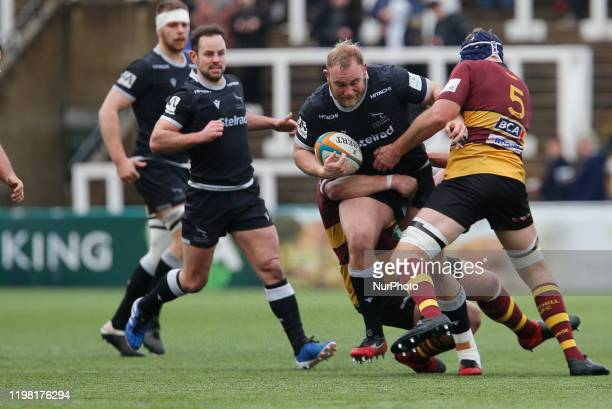 Mike Daniels of Newcastle Falcons in action during the Greene King IPA Championship match between Newcastle Falcons and Ampthill amp District at...