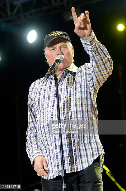 Mike Love of the Beach Boys performs on stage at the Poble Espanyol on July 23, 2012 in Barcelona, Spain.