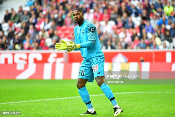Mike Maignan of Lille during the Ligue 1 match between Lille and Guingamp on August 26, 2018 in Lille, France.
