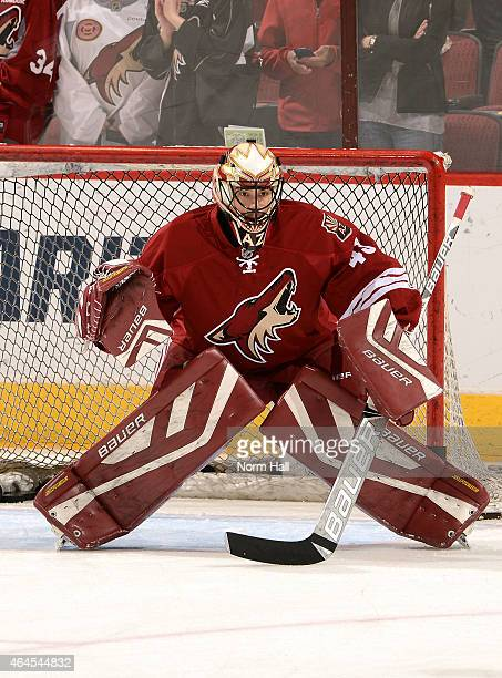 Mike McKenna of the Arizona Coyotes prepares for a game against the Tampa Bay Lightning at Gila River Arena on February 21 2015 in Glendale Arizona