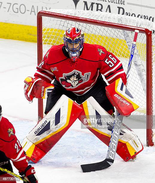 Mike McKenna of the Portland Pirates tends goal against the Providence Bruins during an American Hockey League game at the Dunkin' Donuts Center on...