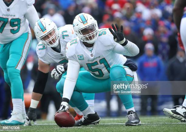 Mike Pouncey of the Miami Dolphins signals before the snap as Jesse Davis gets ready during NFL game action against the Buffalo Bills at New Era...