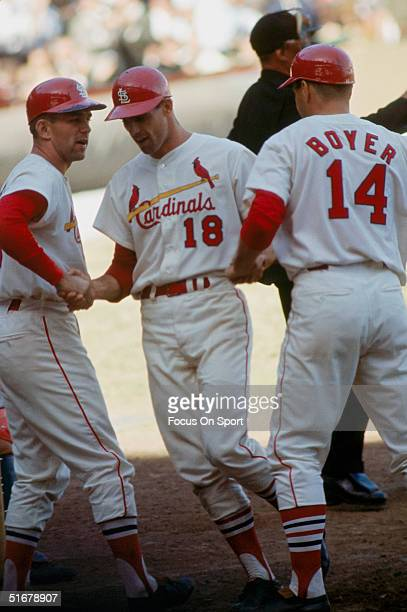 Mike Shannon of the St Louis Cardinals is congratulated by Tim McCarver and Ken Boyer at Busch Stadium in St Louis Missouri in October 1964
