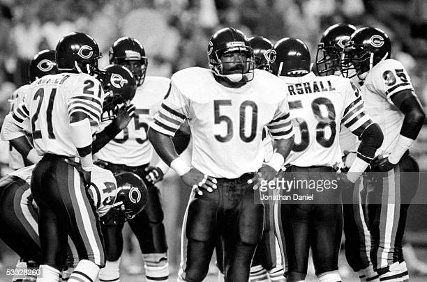 Mike Singletary and the Chicago Bears defense stand on the field during the game against the Minnesota Vikings at the Metrodome on September 19 1985...