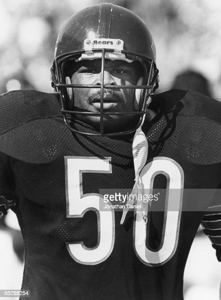 Mike Singletary of the Chicago Bears looks on during the game against the New England Patriots at Soldier Field on September 15 1985 in Chicago...