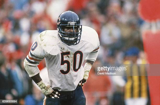 Mike Singletary of the Chicago Bears plays in the Conference Championship game against the San Francisco 49ers played on January 6 1985 at...