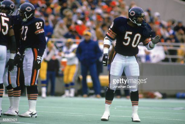 Mike Singletary of the Chicago Bears stands on the field during the 1985 NFC Championship game against the Los Angeles Rams at Soldier Field on...