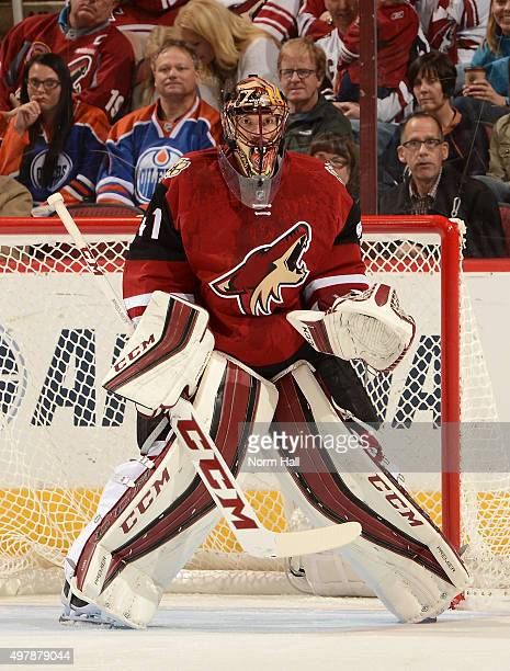 Mike Smith of the Arizona Coyotes gets ready to make a save against the Edmonton Oilers at Gila River Arena on November 12 2015 in Glendale Arizona
