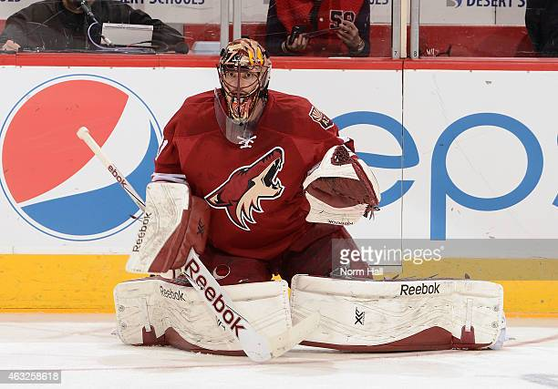 Mike Smith of the Arizona Coyotes prepares for a game against the Detroit Red Wings at Gila River Arena on February 7 2015 in Glendale Arizona