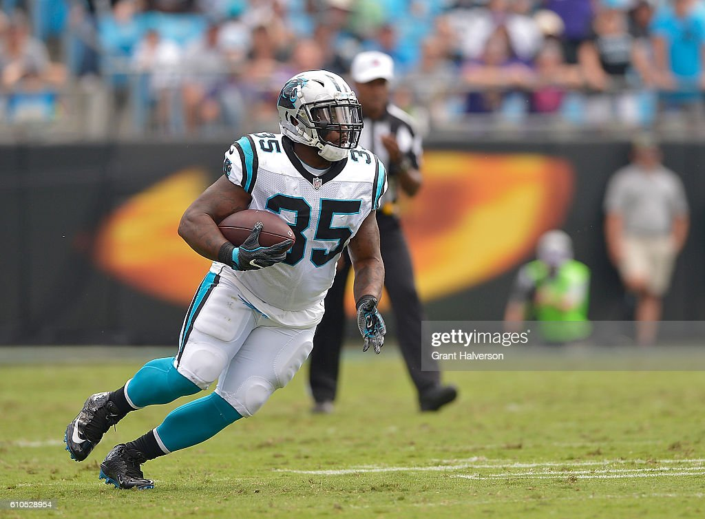 Minnesota Vikings v Carolina Panthers : News Photo