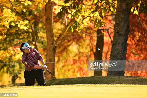Miki Sakai of Japan chips onto the 4th green during the final round of the Ito-En Ladies Golf Tournament at the Great Island Club on November 15,...