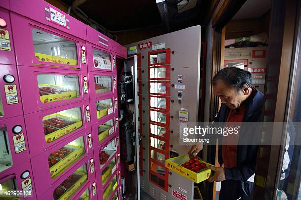 Mikio Okuda, owner of Okuda Farm, prepares a tray of Himebijin strawberries to be placed for sale in a vending machine at his farm in Hashima, Gifu...