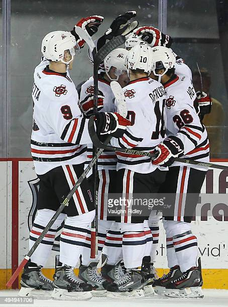 Mikkel Aagaard of the Niagara IceDogs celebrates a goal with teammates during an OHL game against the Mississauga Steelheads at the Meridian Centre...