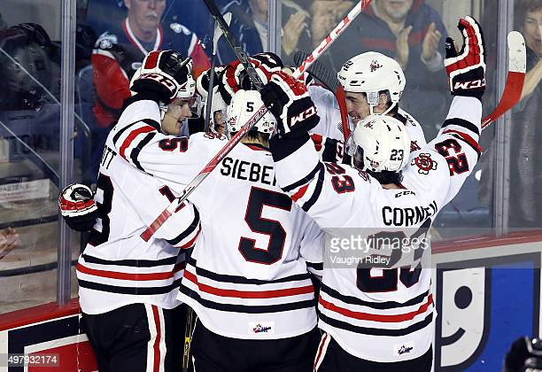 Mikkel Aagaard of the Niagara IceDogs celebrates a goal with teammates during an OHL game against the Erie Otters at the Meridian Centre on November...