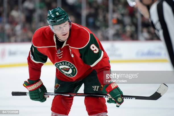 Mikko Koivu of the Minnesota Wild looks on during the second period of the game against the Los Angeles Kings on February 27 2017 at Xcel Energy...