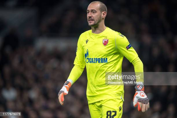 Milan Borjan of Crvena Zvezda looks on during the UEFA Champions League group B match between Tottenham Hotspur and Crvena Zvezda at Tottenham...