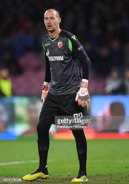 Milan Borjan of Red Star Belgrade in action during the Group C match of the UEFA Champions League between SSC Napoli and Red Star Belgrade at Stadio...