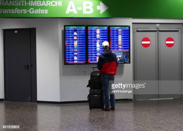 Milan, Italy: Man Studies Arrival-Departure Board at Malpensa Airport