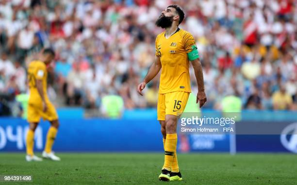 Mile Jedinak of Australia reacts during the 2018 FIFA World Cup Russia group C match between Australia and Peru at Fisht Stadium on June 26 2018 in...