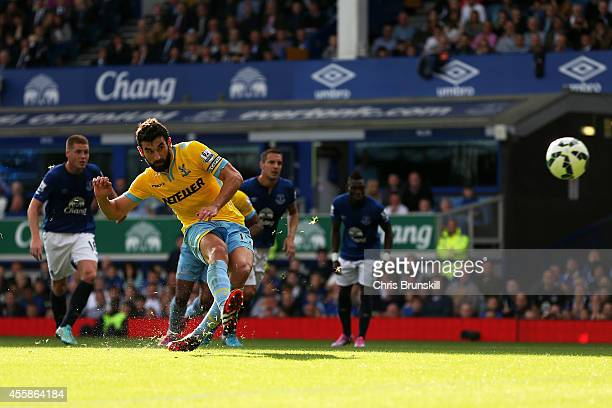 Mile Jedinak of Crystal Palace levels the scores at 1-1 as he scores from the penalty spotduring the Barclays Premier League match between Everton...