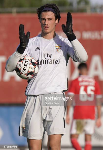 Mile Svilar of SL Benfica B in action during the Liga Pro match between SL Benfica B and GD Chaves at Caixa Futebol Campus on November 3 2019 in...