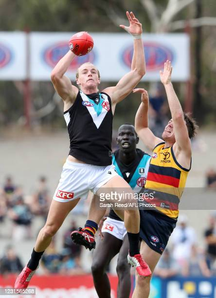 Miles Bergman of Port Adelaide and James Rowe of the Adelaide Crows with Aliir Aliir of Port Adelaide in the background during the 2021 AAMI...