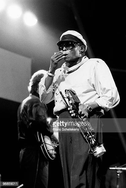 Miles Davis performs live on stage at the North Sea Jazz festival at the Hague, Holland on July 10 1984