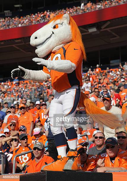 Miles the mascot of the Denver Broncos entertains the fans as the Denver Broncos defeated the Kansas City Chiefs 2417 at Sports Authority Field at...