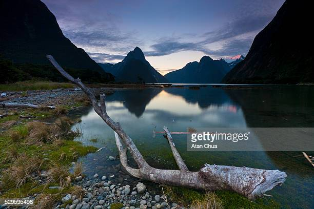 Milford Sound in Fiordland National Park In South Island of New Zealand in Summer