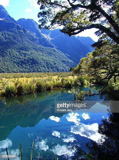 milford sound landscape - reflection lake stock photos and pictures