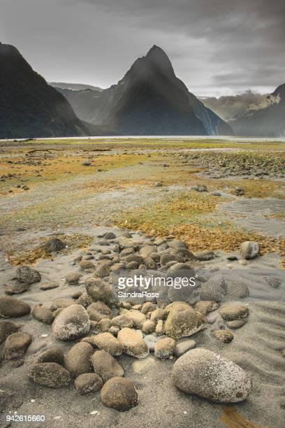 Milford Sound Low Tide 4