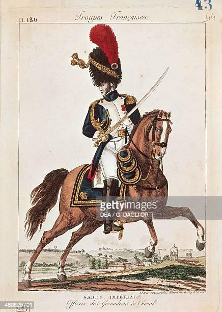 Militaria, France, 19th century - Napoleon Era soldier. Imperial guard, horseback grenadier officer Paris, Musée De L'Armée