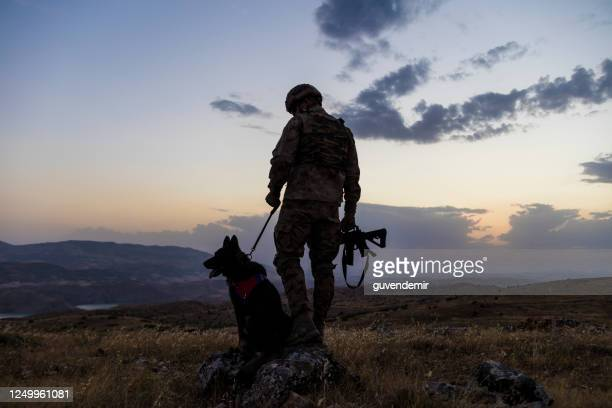 military dog and its soldier owner - police dog stock pictures, royalty-free photos & images